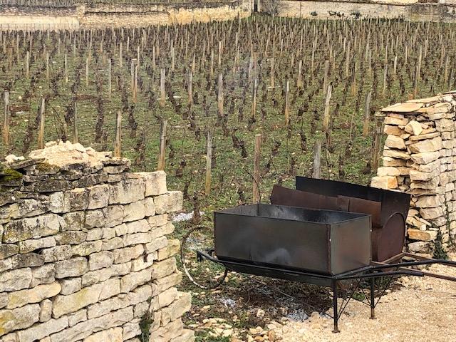 Les travaux d'hiver dans les vignes…